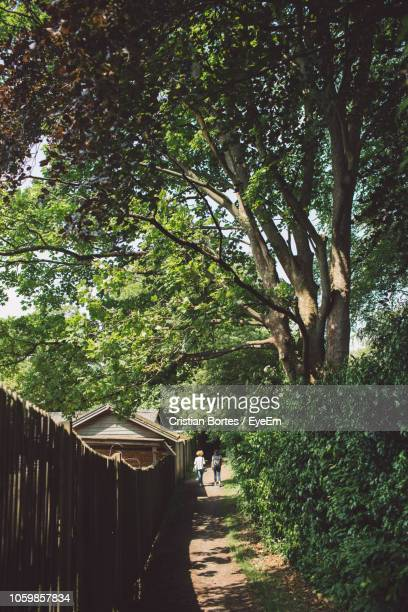 Rear View Of People Walking On Footpath By Trees On Field