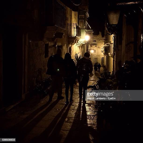 Rear View Of People Walking On Illuminated Footpath Amidst Houses At Night