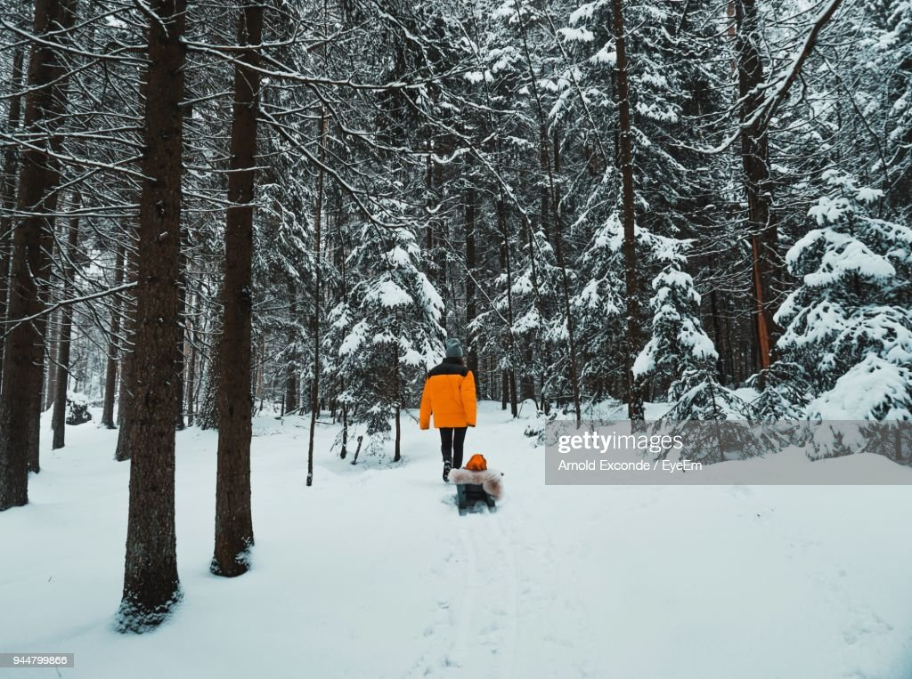 Rear View Of People Walking On Snow Covered Landscape : Stock Photo