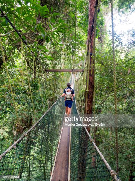 rear view of person crossing rope bridge - monika gregussova stock pictures, royalty-free photos & images
