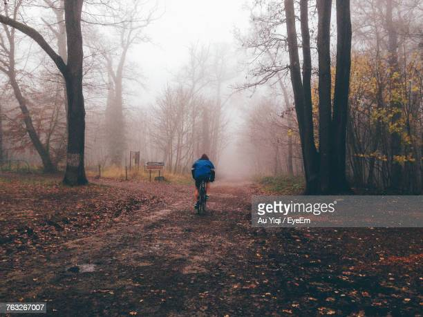 Rear View Of Person Cycling On Footpath Amidst Tree During Foggy Weather