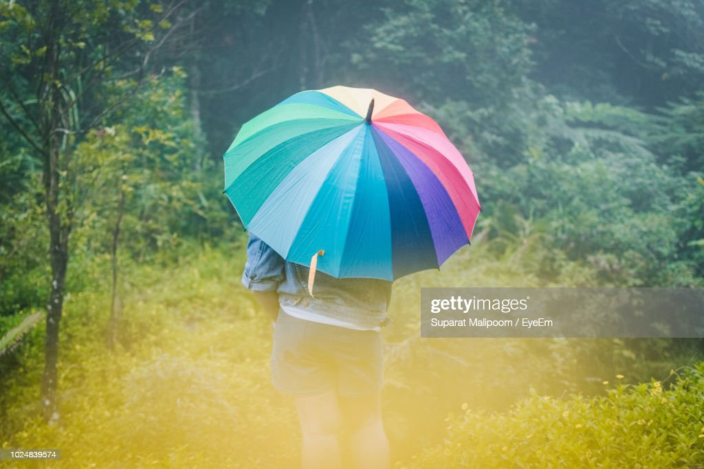 Rear View Of Person Holding Umbrella High Res Stock Photo Getty Images