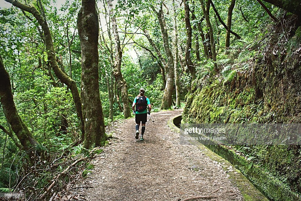 Rear View Of Person Running On Dirt Road In Forest : Stock Photo