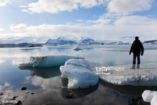 rear view of person standing on ice sheet on glacial lagoon with icebergs, mountains in the distance. - pack ice stock pictures, royalty-free photos & images