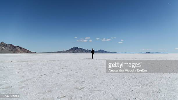 rear view of person standing on salt flat against sky - alessandro miccoli stockfoto's en -beelden