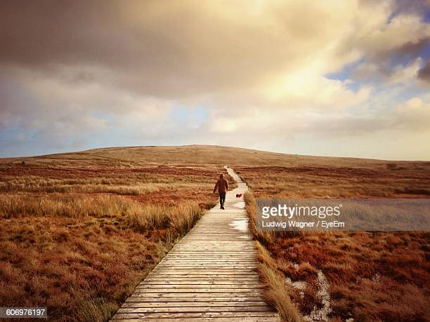 rear view of person walking on boardwalk leading towards black mountain - belfast stock pictures, royalty-free photos & images