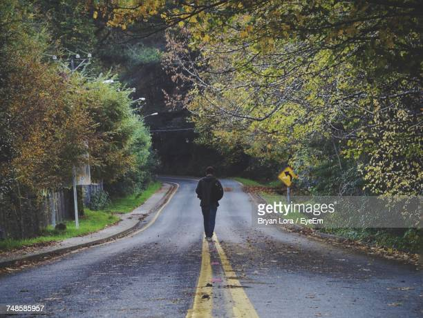 Rear View Of Person Walking On Road Along Trees