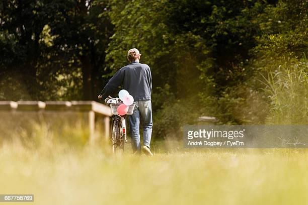 rear view of person walking with bicycle on road - pedalantrieb stock-fotos und bilder