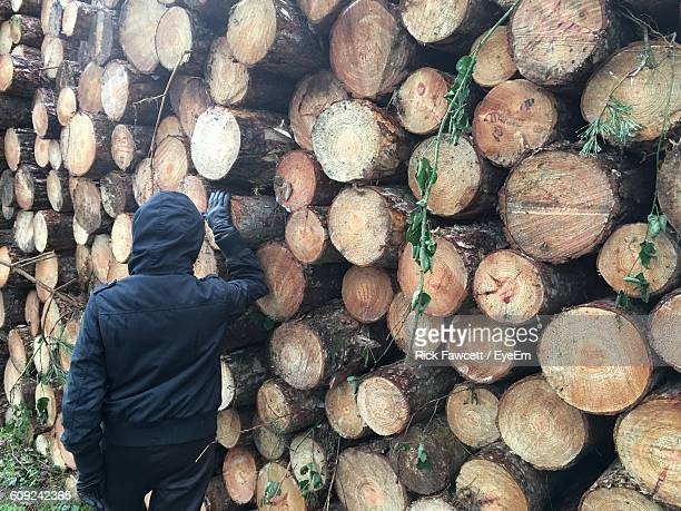 rear view of person wearing hooded shirt standing by log stack - capucha fotografías e imágenes de stock