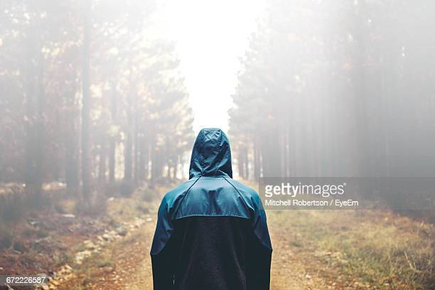 Rear View Of Person Wearing Raincoat Amidst Trees During Rainy Season