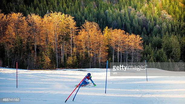 Rear View of Professional Alpine Skier with forest in background