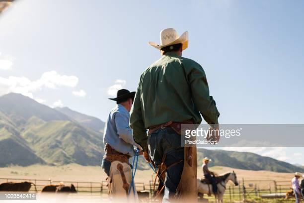 vista posteriore degli allevatori che camminano verso la penna animale per l'etichettatura dell'orecchio del bestiame - ranch foto e immagini stock