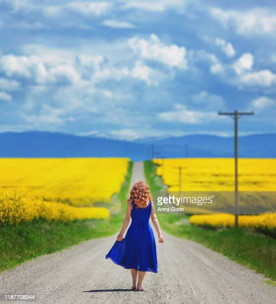 rear view of redhead in sleeveless blue dress walking barefoot down dirt road lined with vivid yellow canola flowers - long bright yellow dress stock pictures, royalty-free photos & images