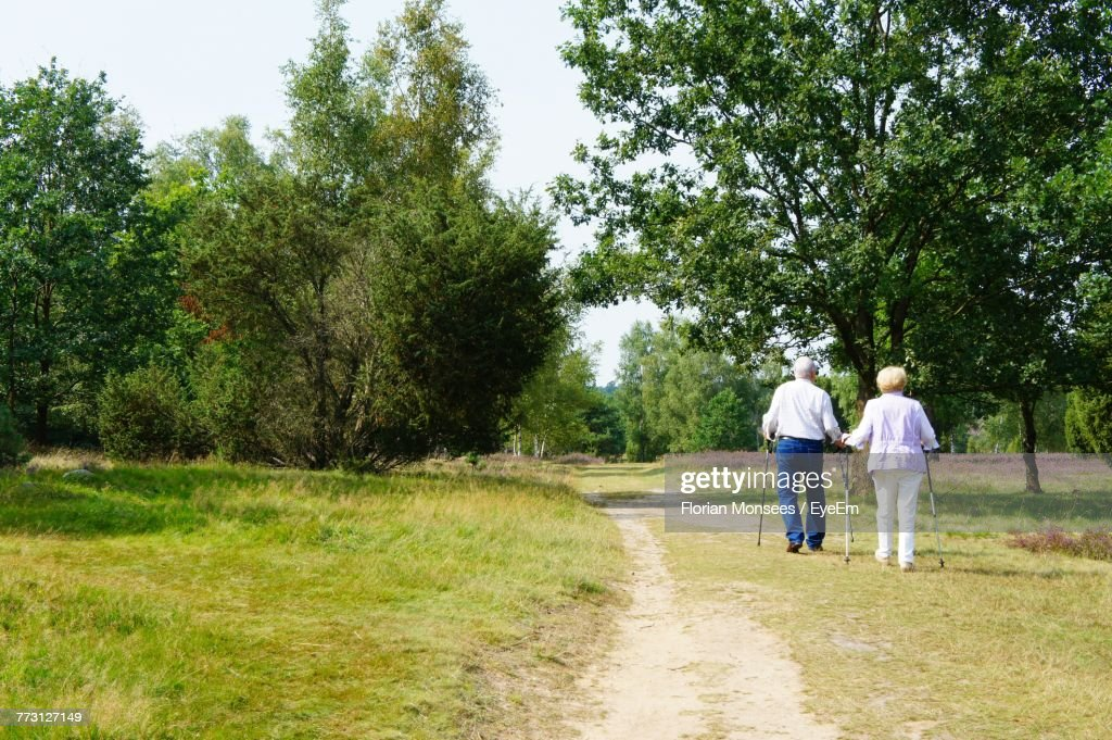 Rear View Of Senior Couple Walking On Grassy Field At Park : Photo