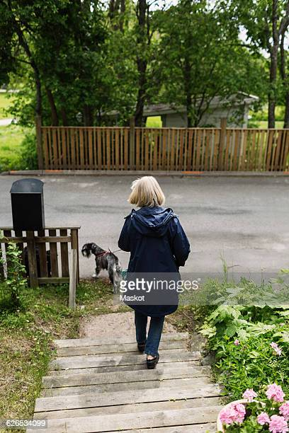 Rear view of senior woman moving down steps with dog