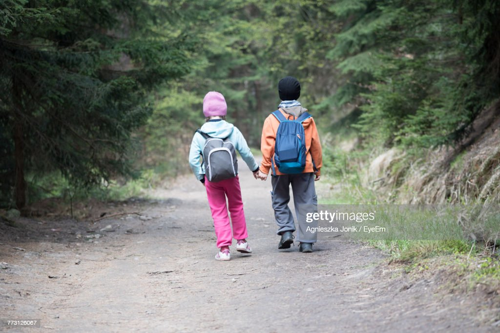 Rear View Of Siblings Walking On Footpath : Photo