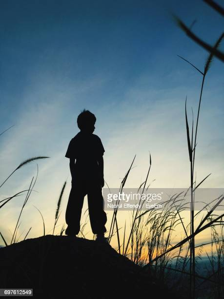 Rear View Of Silhouette Boy Standing On Rock By Plants Against Sky During Sunrise