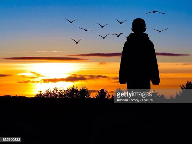 Rear View Of Silhouette Boy Watching Birds Flying At Sunset