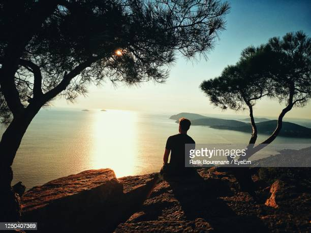 rear view of silhouette man looking at sea against sky - 松林 ストックフォトと画像