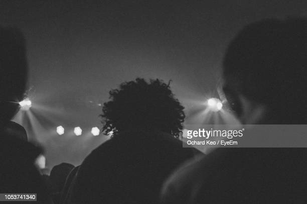 rear view of silhouette people at music concert - hamiltonmusical stockfoto's en -beelden