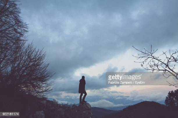 rear view of silhouette person standing on cliff - fabrizio zampetti foto e immagini stock