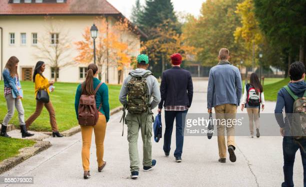rear view of students walking through the park - unrecognisable person stock pictures, royalty-free photos & images