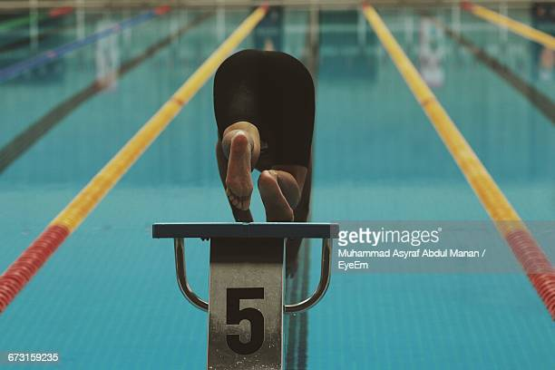 rear view of swimmer jumping in pool - number 5 stock pictures, royalty-free photos & images