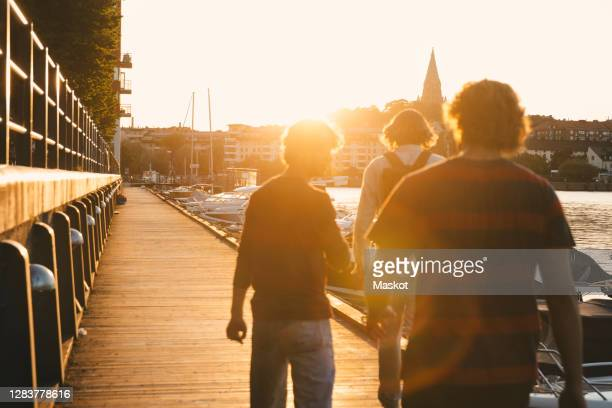 rear view of teenage boy with male friends walking at harbor during sunset - stockholm stock pictures, royalty-free photos & images