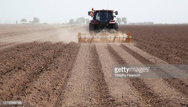 rear view of tractor with plow as it prepares a field for planting; farm buildings and tree line on the horizon - timothy hearsum fotografías e imágenes de stock