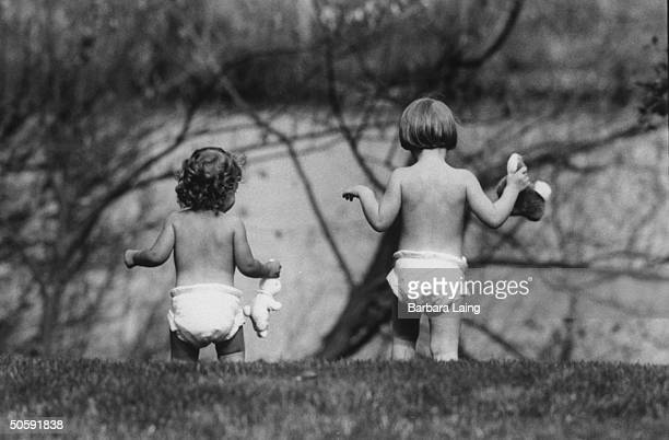 Rear view of two baby girls walking together clutching toy cottontail rabbits clad only in Cottontail diapers created for a rashplagued market of...