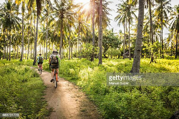rear view of two young women cycling in palm tree forest, gili meno, lombok, indonesia - lombok fotografías e imágenes de stock