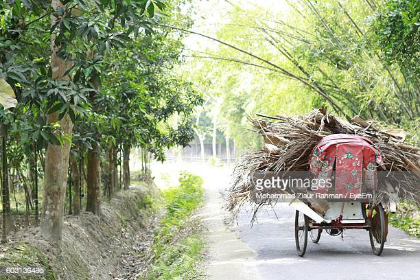 rear view of wheeled cart on road along trees - ziaur rahman stock pictures, royalty-free photos & images
