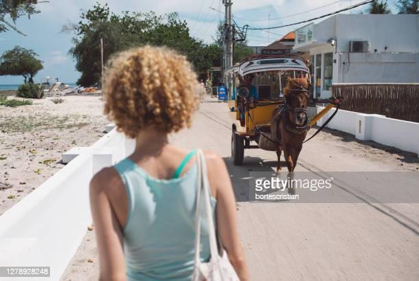rear view of woman against a carriage - bortes fotografías e imágenes de stock