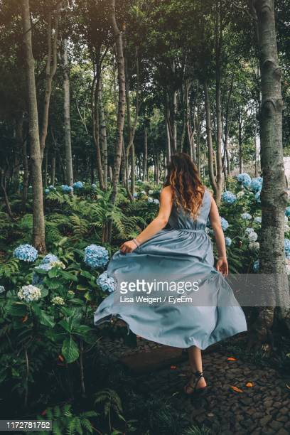 rear view of woman by plants and trees in forest - ilha da madeira imagens e fotografias de stock