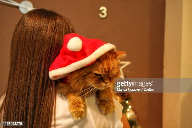 rear view of woman carrying cat wearing santa hat at home - cat with red hat stock pictures, royalty-free photos & images