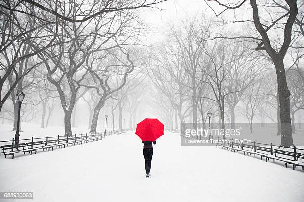 Rear View Of Woman Carrying Red Umbrella During Blizzard At Central Park