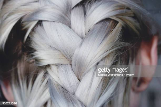rear view of woman head with braids - braided hair stock pictures, royalty-free photos & images
