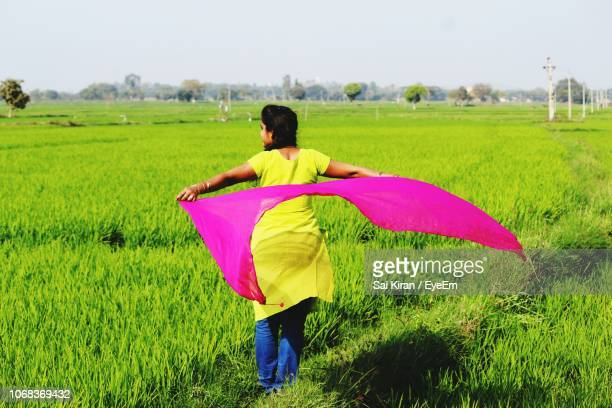 rear view of woman holding dupatta on agricultural landscape - dupatta stock pictures, royalty-free photos & images
