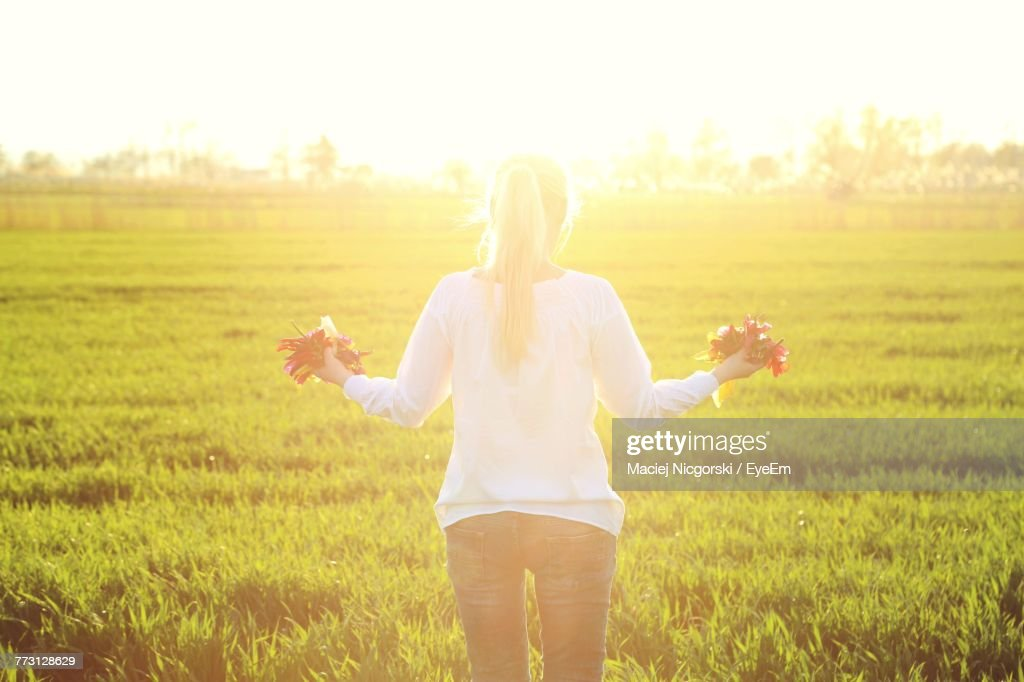 Rear View Of Woman Holding Flowers While Standing On Grassy Field During Sunny Day : Stock Photo