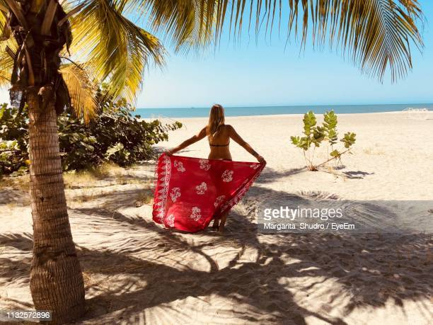 rear view of woman in bikini holding sarong at beach - margarita beach stock photos and pictures