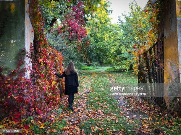 rear view of woman in black in a secret garden with colorful ivy growing on the gates - lady madeleine stock-fotos und bilder