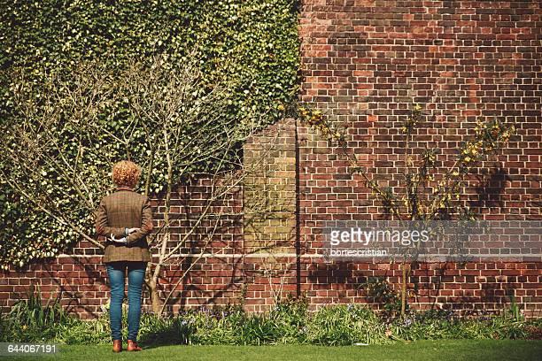 Rear View Of Woman Looking At Ivy On Brick Wall