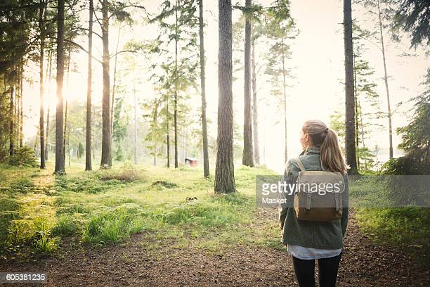 Rear view of woman looking away while standing in forest