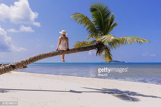 Rear view of woman on a palm tree at beach.