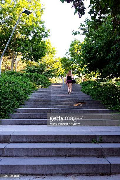 Rear View Of Woman On Steps In Park