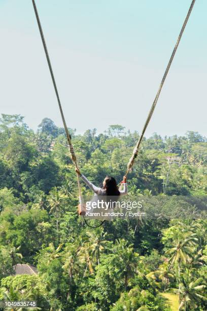 rear view of woman on swing over trees in forest - bali stock pictures, royalty-free photos & images