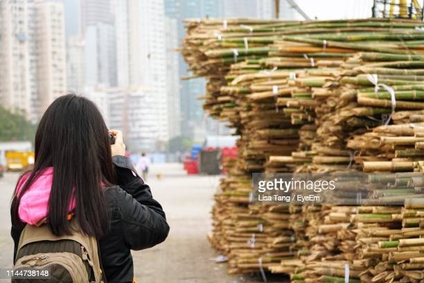 rear view of woman photographing stacked bamboos - lisa tang stock photos and pictures