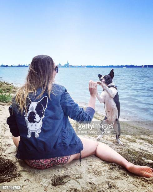 rear view of woman playing with dog at riverbank - モバイル撮影 ストックフォトと画像