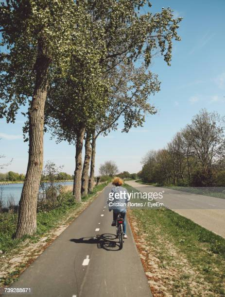 rear view of woman riding bicycle on road by trees during sunny day - bortes stock-fotos und bilder