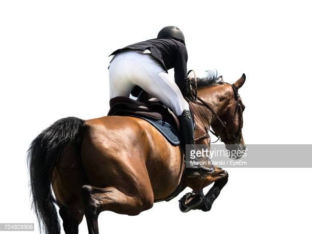 Rear View Of Woman Riding Horse In Competition